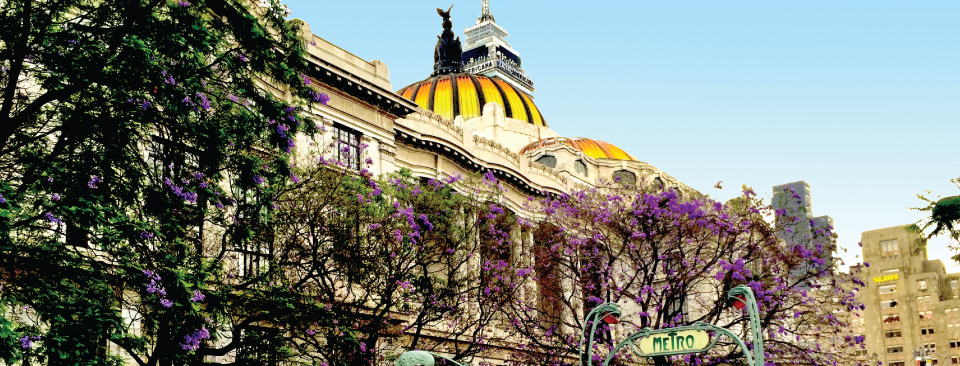 """The oldest """"European City"""" in the new world, Mexico City is considered one of the most exciting places to visit."""