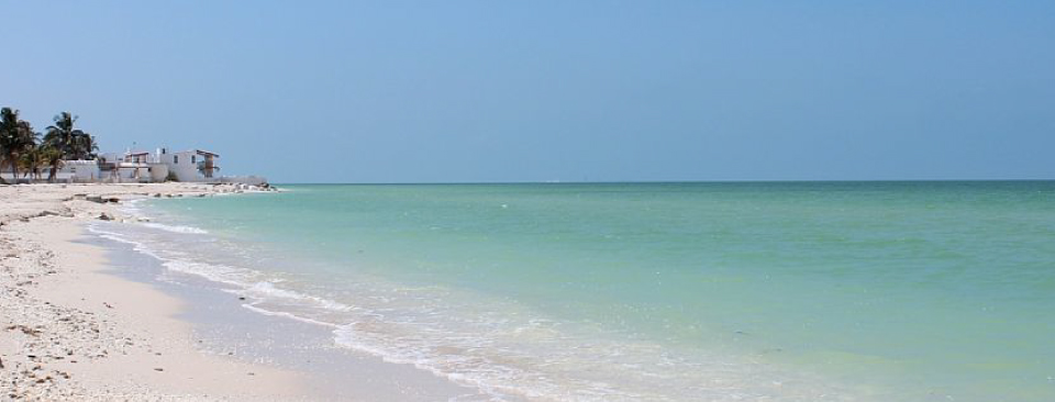 The warm breezes and aquamarine waters of the Gulf of Mexico offer endless options for beachcombing in both directions