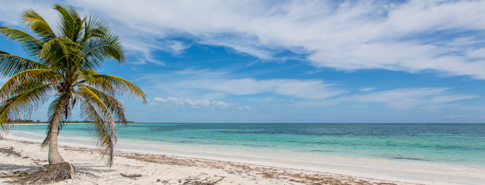 White sand, coconut palms and a complete absence of crowds are the defining charms of this slice of paradise in Yucatan