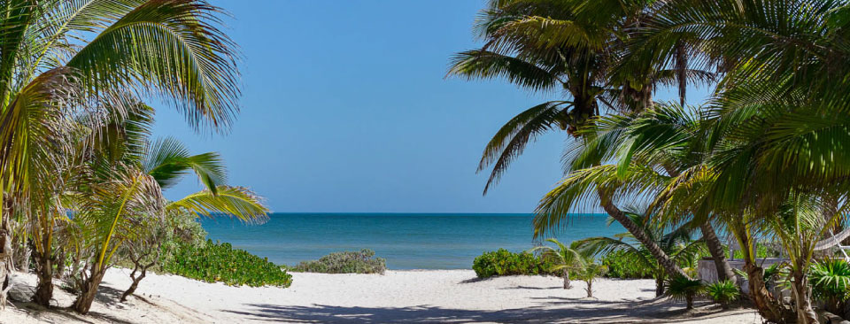 Vacation homes along this stretch of Yucatan coastline have their own private view of paradise among the palm trees.